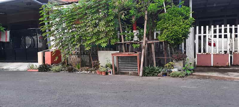 Lokasi kandang ayam - chicken coop - di depan rumah