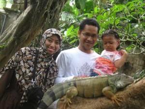 Liburan Di Bali Bird Park