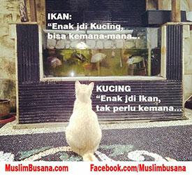 Meme kucing bersyukur